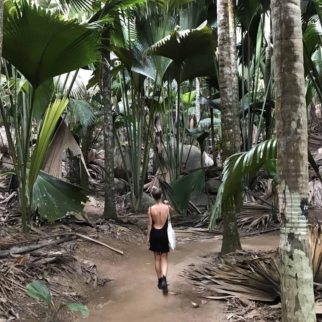 Hidden gem Seychelles