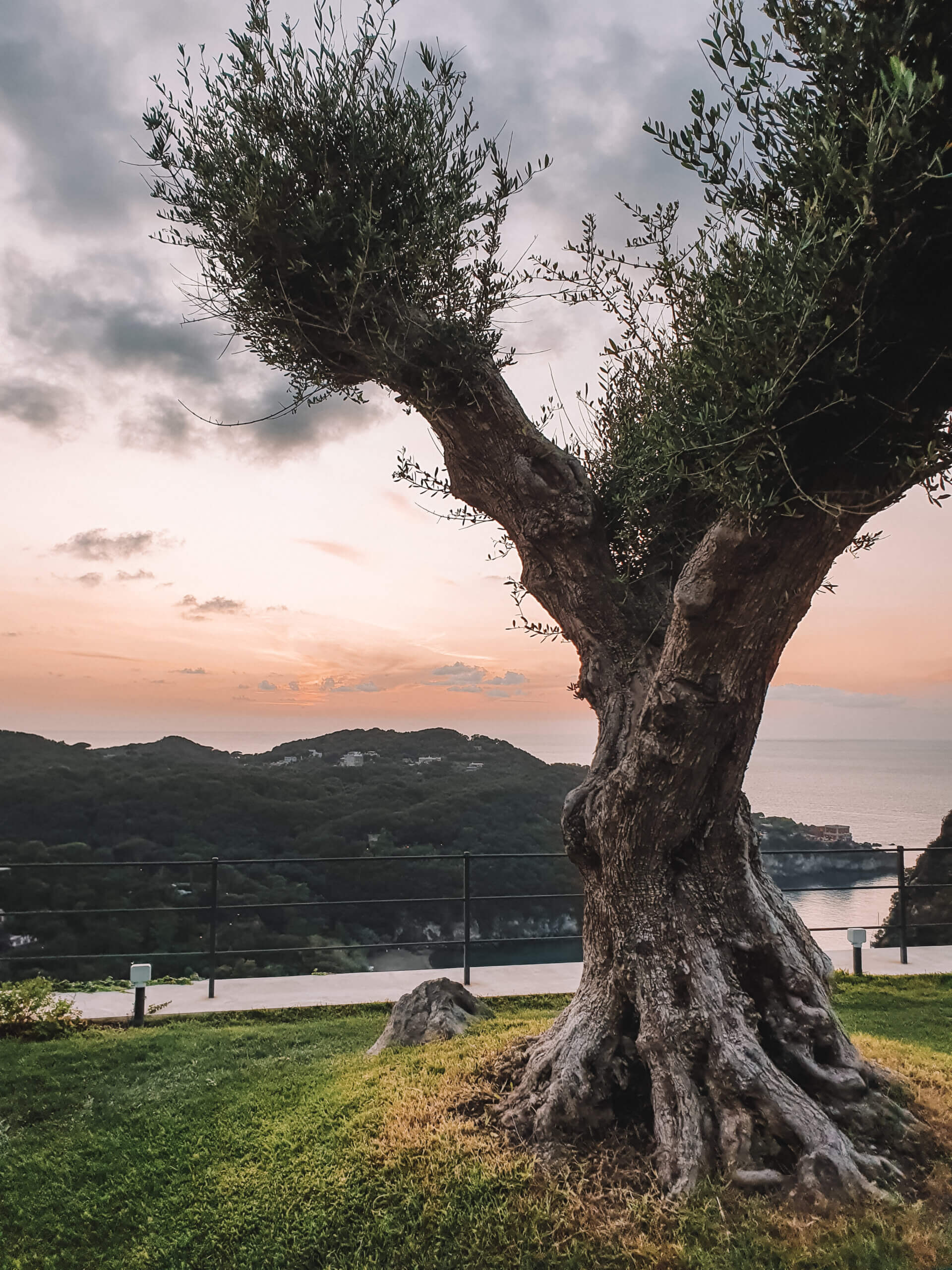 San Montano Ischia Island Italy